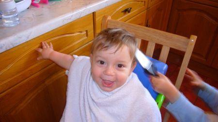 Ollie before haircut