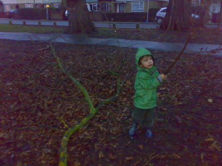 thomas sticks